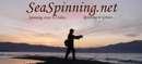 seaspinning